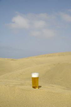 Free Fresh Beer In Desert Stock Image - 2946701