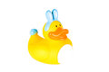 Free Rubber Ducky Boy Dressed As Easter Bunny Stock Images - 29410724