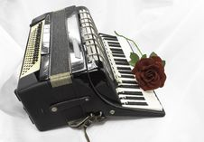 Free Accordion Stock Photography - 29410242