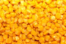 Free Background Of Grains Of Maize Stock Photo - 29416180