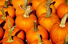 Free Orange Pumpkins And A Halloween Display. Royalty Free Stock Photography - 29418517