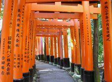 Free Tunnel Of Thousand Torii Gates In Fushimi Inari Shrine Royalty Free Stock Image - 29419256