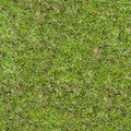 Free Grass Texture. Stock Photos - 29422063