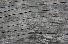 Weather-beaten Wood Surface Closeup