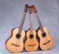 Free Spanish Classical Guitar Stock Photo - 29484410