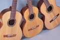 Free Spanish Classical Guitar Royalty Free Stock Photography - 29484497