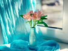 Free Decorative Flowers Stock Images - 29484214