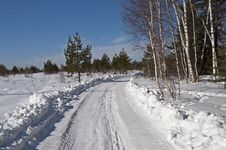 Free Snowy Road At Forest Edge Stock Image - 29489911