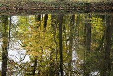 Free Reflection Stock Photos - 29495413