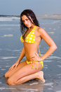 Free Lovely Young Woman In A Bikini Royalty Free Stock Photography - 2957527