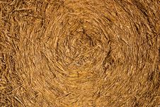 Rolled Hay Royalty Free Stock Photo