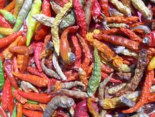 Free Colourful Chilli Stock Image - 2952111