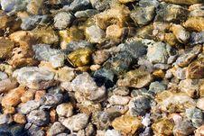 Free Background Of Baikal Bottom Stock Image - 2953301