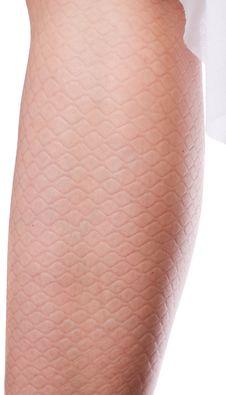 Free Leg Stock Image - 2953421