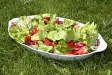 Free A Fresh Salad Royalty Free Stock Photography - 2954287