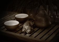 Free Chinese Tea Ceremony Royalty Free Stock Photo - 2954655