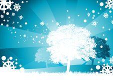 White Christmas Tree Stock Photos