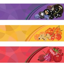 Free Three Berry Banner Stock Images - 29500104