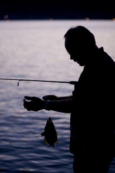 Free Fishing Stock Image - 29509211