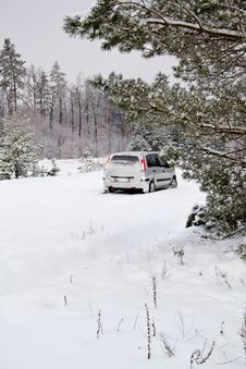 Car In The Winter Forest Stock Photo