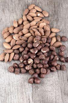 Free Almond And Hazelnut Stock Image - 29542911
