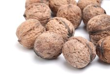 Free Walnut Royalty Free Stock Image - 29547326
