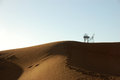 Free Wrought Iron Table And Chairs On The Top Of Sand Dune Stock Photography - 29551092