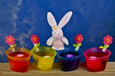 Free Dyeing Easter Eggs. Stock Photography - 29552622