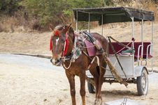 Chinese Horse-drawn Carriage Royalty Free Stock Photo
