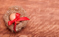 Free Egg Swollen By A Red Bow Lies In The Nest Royalty Free Stock Images - 29562459