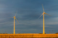 Free Wind Turbine In A Field Royalty Free Stock Image - 29577186