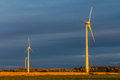Free Wind Turbine In A Field Royalty Free Stock Photo - 29577685