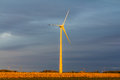 Free Wind Turbine In A Field Royalty Free Stock Photos - 29578378