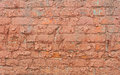 Free Brick Wall Royalty Free Stock Image - 29585466