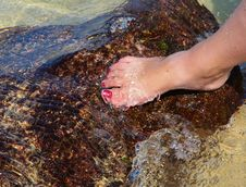 Free Woman S Foot In The Water Royalty Free Stock Images - 29586869