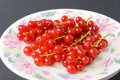 Free Red Currant.-isolated 2 Royalty Free Stock Photography - 2968557