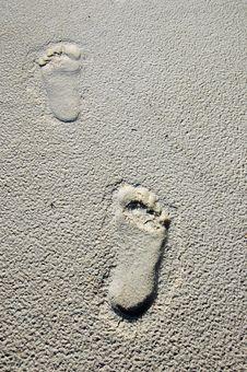 Free Footprints On The Sand Stock Photos - 2960753