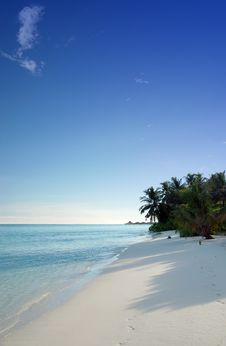 Free Tropical Beach Royalty Free Stock Image - 2962106