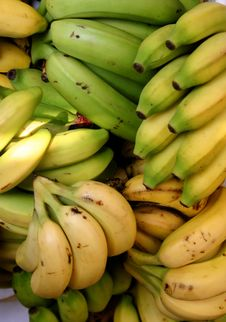 Fresh Organic Bananas Royalty Free Stock Image