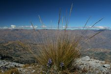 Free Mountain Scenery - Andes Royalty Free Stock Photo - 2967285