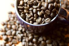 Free Cup Of Cofee Macro Royalty Free Stock Image - 2967676