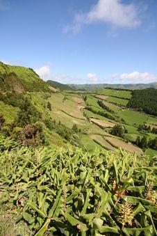 Free Azores Landscape Stock Photo - 2967760