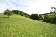 Free Azores Landscape Stock Photos - 2967813