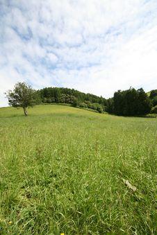 Free Azores Landscape Royalty Free Stock Photo - 2967815