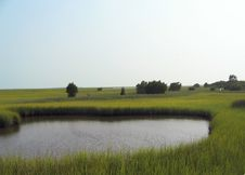 Free Salt Marsh Pond Stock Images - 2969584