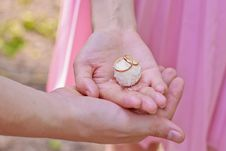 Free Wedding Rings On The Candy Stock Images - 29611664