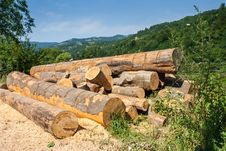 Free Lumber In Mountains Stock Photography - 29627742