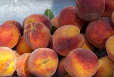 Free Peaches Stock Image - 29628341