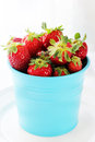 Free Pot With Strawberries Stock Photos - 29633753