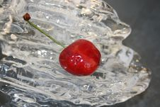 Iced Cherry Stock Images